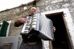 Mario playing accordion